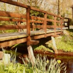 Brücke im Schlosspark